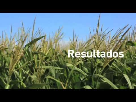 Vídeo Institucional Aminoagro