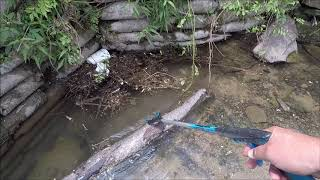 Metal Detecting: Carnival Grounds & Stormed Out Creek Hunt
