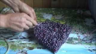 Заморозка ягоды