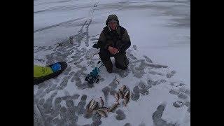 200 Лунок за день!  Мышцы подкачал)) Рыбалка на Окуня в Куршском заливе.