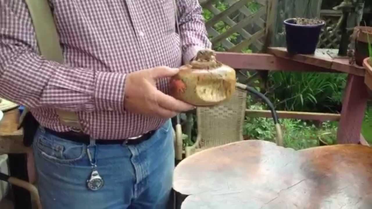 Fossil art whale bone vertebrae carving copper inlay bill