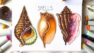 """Видео урок рисования маркерами """"Морское настроение. Ракушки"""" (Превью к уроку)"""