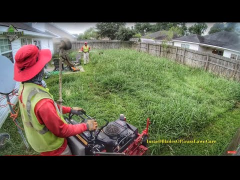 PART #1 Mowing a Overgrown Backyard | Mowing tall grass (REAL TIME & SOUNDS)