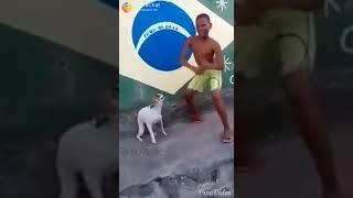 Funny Dog Full Dhamaka In Rourkela