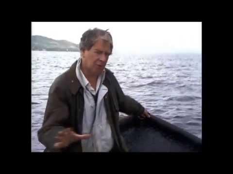 'McGilloway's Way- The Shark Hunt' (1992)