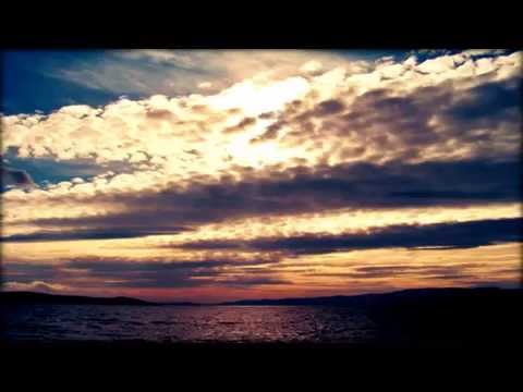 Parijat - The Most Beutiful Splendour