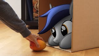 feeding-the-bat-pony-mlp-in-real-life