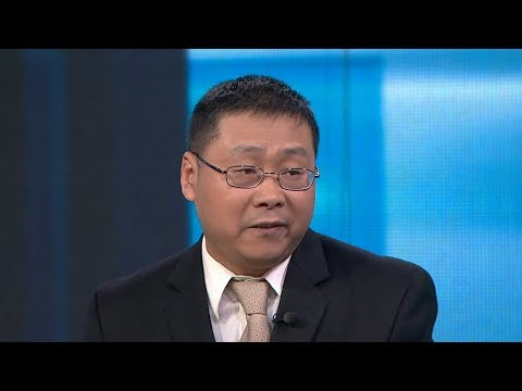 Fang Li Of Hubei Fellows Association Discusses Aid For China