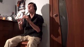 Би-2 Компромисс (сover на гитаре) Russian Flute