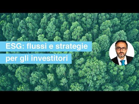 25 | Le strade per investire sostenibile