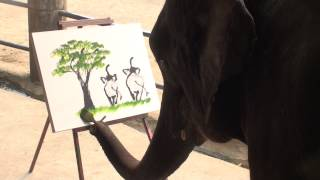 Paintings By Elephants - The Best Quality Elephant Paintings On The Web