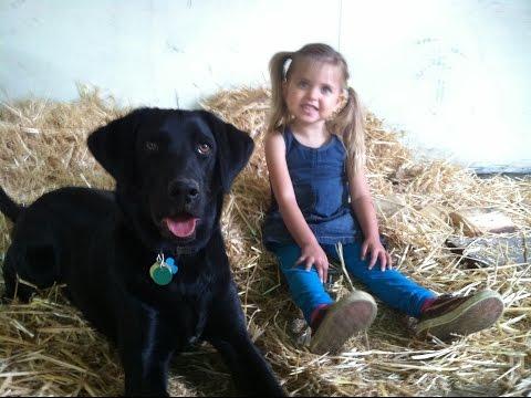 Sophia Training with Watson