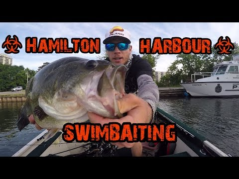 We Got KICKED OUT   Hamilton Harbour Swimbait Fishing