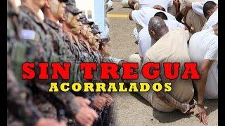 PANDILLAS ACORRALADAS  plan control territorial se extiende