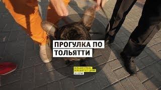 Прогулка по Тольятти и обзор нового Renault Logan - День 20 - Самара-Тольятти - Большая страна - БТД(Подкаст «Большой тест-драйв» - https://itun.es/ru/UdTgS.c Сайт: http://btdrive.ru/ | Twitter: http://twitter.com/bigtestdrive | G+: http://google.com/+stillavinpro..., 2014-05-01T12:32:29.000Z)