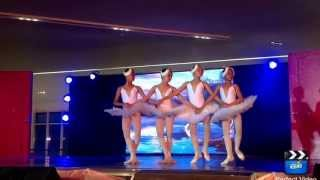 Swan Lake performance by Ballet Philippines. Barbie in the Pink Shoes event at SM Aura