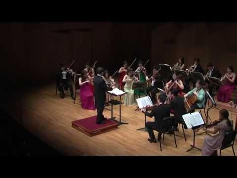 """Boccherini Symphony No 6  D minor Op 12 """"La casa del diavolo"""""""