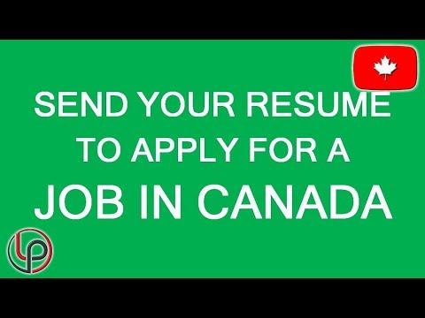 Vacancies In Canada! LP Group