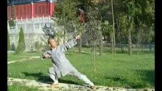 Shaolin Monk 8 Pieces of Brocade (Baduan Jin)