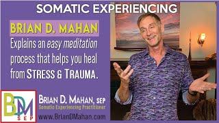 Somatic Experiencing Easy Meditation w/ Brian Mahan, Stress & Trauma Specialist