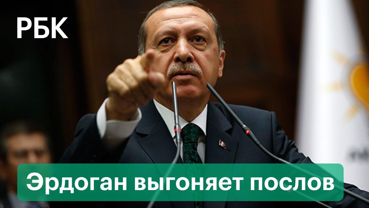 Эрдоган выгоняет из Турции послов США Франции Германии за защиту диссидента