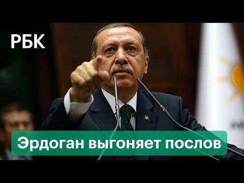 Эрдоган выгоняет из Турции послов США, Франции, Германии за защиту диссидента