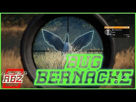BUG BERNACHE THE HUNTER CALL OF THE WILD