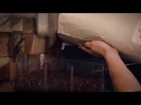 The Coffee Tale - Old World Village, Huntington Beach, CA