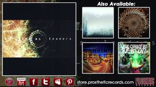 Animals As Leaders - (Track Nine - Inamorata)
