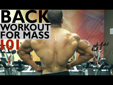 BACK WORKOUT FOR MASS: BACK 101