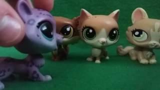 Lps: сериал Коты- Воители 8 серия.