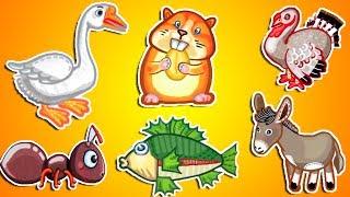 Изучаем животных. Мультик про Алфавит Учим. Азбука для детей. Изучаем азбуку. Животные мультик.