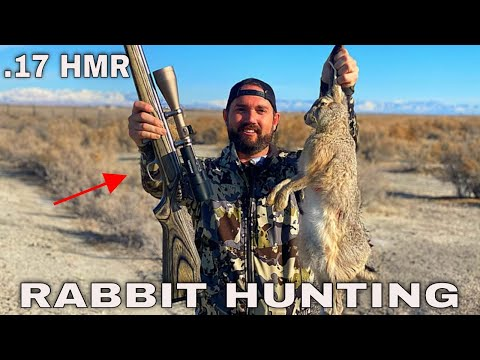 EPIC Rabbit Hunting Using .17  HMR Rifle CATCH CLEAN COOK