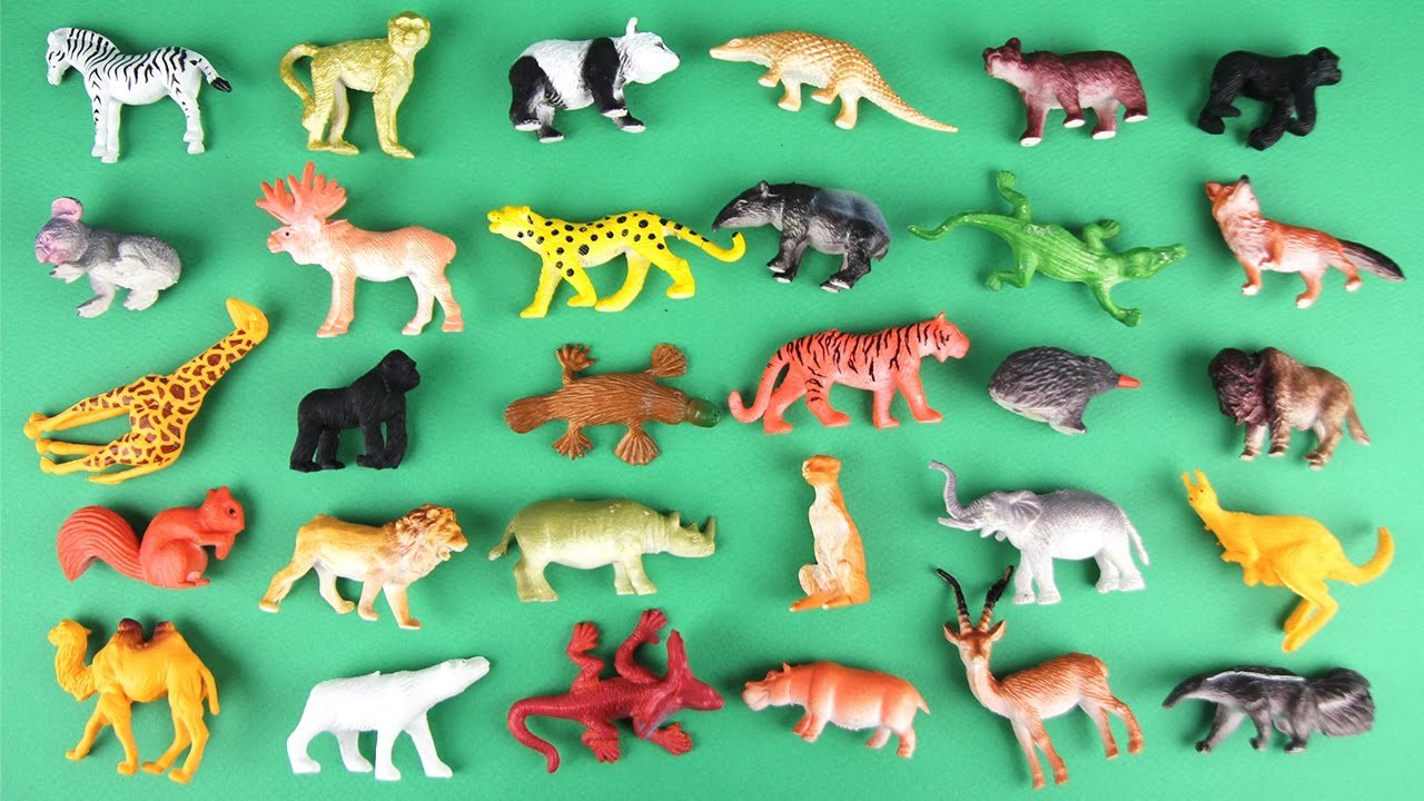 Best Animal Planet Toys For Kids And Toddlers : Animals learn for kids learning safari wild animal
