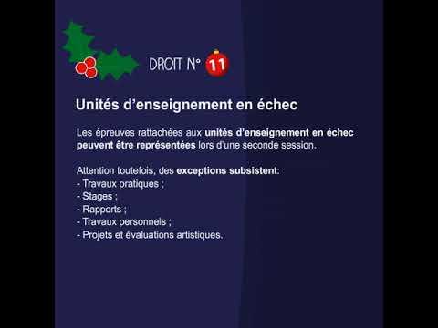 Tes droits et obligations en examens pour la session de Noël - 11