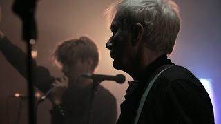 Gang of Four live on PressureDrop.tv