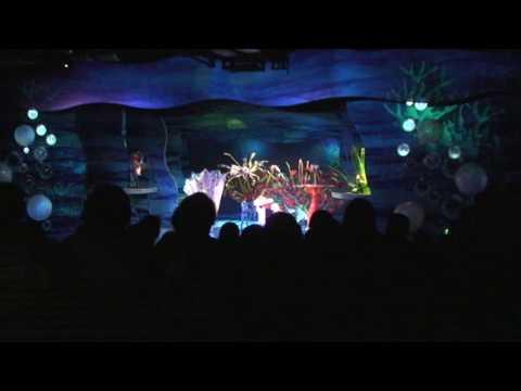 Walt Disney World - One Family's Adventure (short version)