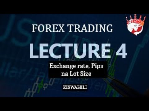 FOREX TANZANIA KISWAHILI - Lecture 4  (Exchange rate, PIPS and LOT SIZES ), scalpking thumbnail