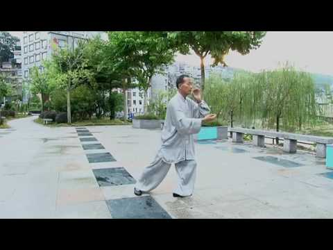 Traditional Yang shi Tai Chi 85 forms