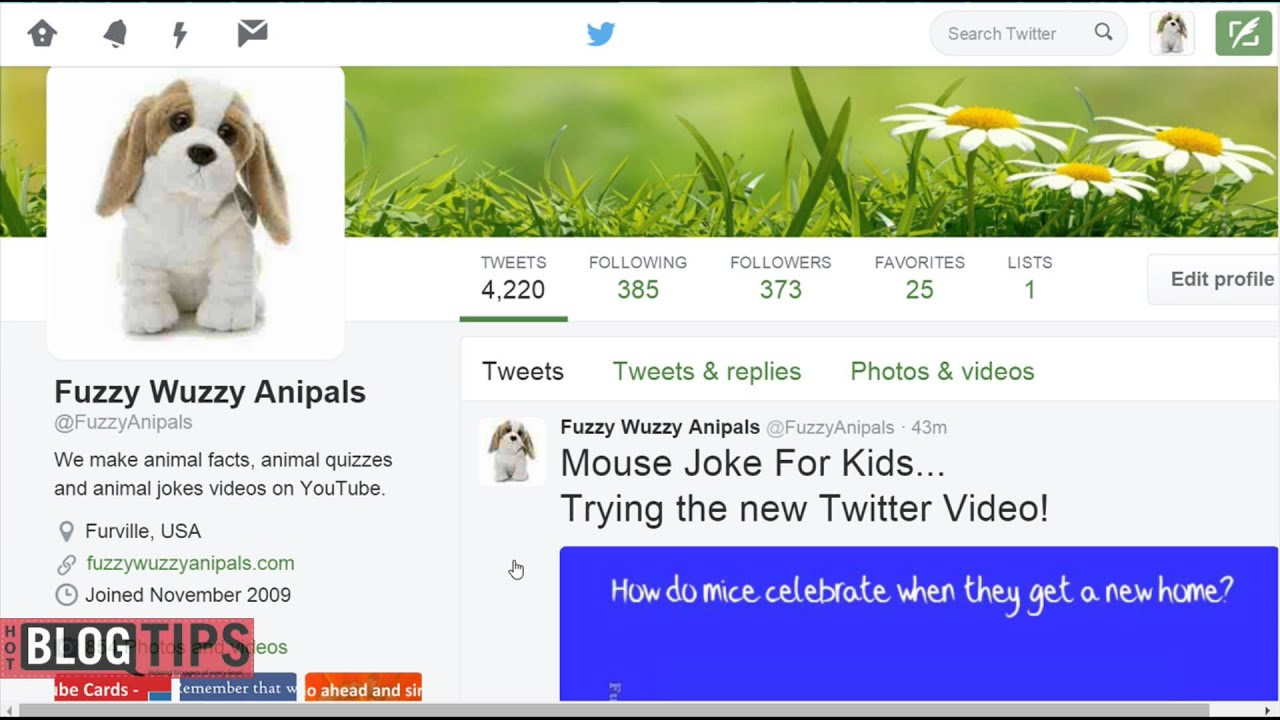 How To Upload Video To Twitter from Desktop