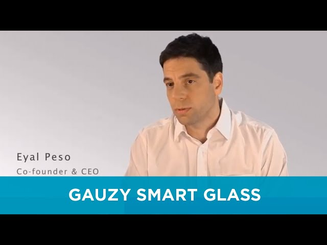Gauzy LCG video with interviews