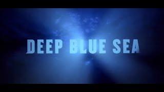 Deep Blue Sea (1999) - Official Trailer