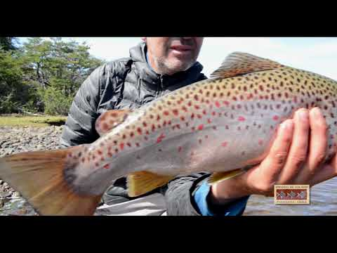 Estancia De Los Rios | Fly Fishing In Chile