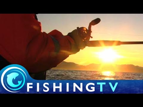 Sea Fishing in Norway - Fishing TV