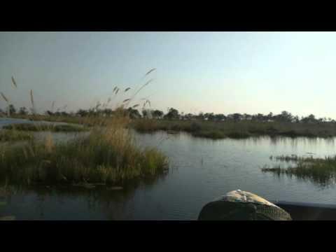 Motor boat ride, Vumbura Plains, Botswana, 2015-10-02