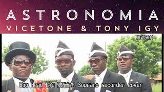 Vicetone u0026 Tony Igy - Astronomia(高音笛) cover
