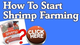 How To Start Shrimp Farming - Shrimp Farming Guide, Pdf eBook Review