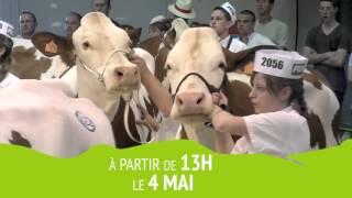 Bande annonce Montbéliard Prestige 2016