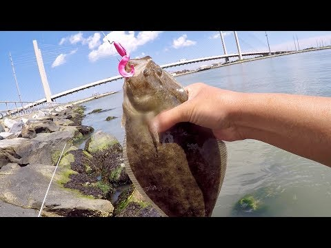 LOOK WHAT I CAUGHT FROM THE BEACH!!! (Summer Surf & Inlet Fishing)