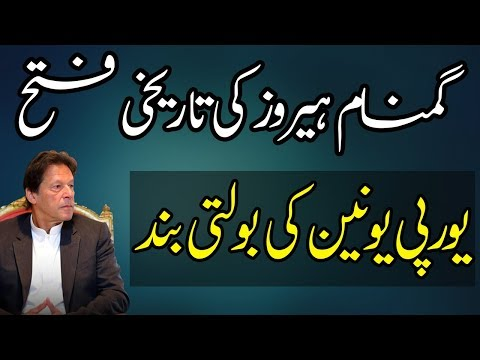Brilliant Response of Imran Khan to European Union and Others
